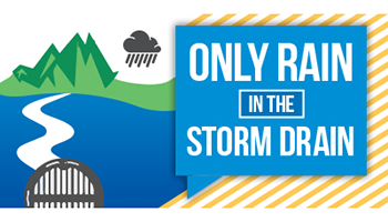 Graphic for the Only Rain in the Storm Drain campaign