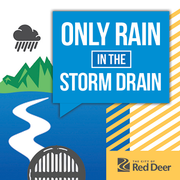 Only rain in the storm drain campaign graphic