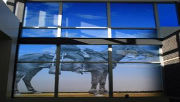 Glass windows with an RCMP officer on horseback etched in the glass.